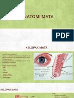 PPT Referat Anatomi Mata