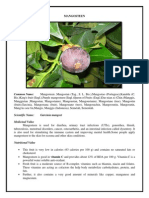 Mangosteen Manual | Grafting | Seed