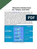 metabolisme asam palmitat