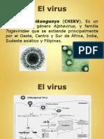 Powerpoint - Fiebre Chikungunya