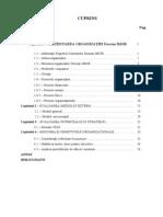 Management Strategic Cuprin Proiect