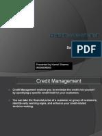 Credit Management 3