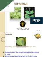 Pengenalan penyakit tanaman