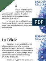 Biologia Celular Unidad i