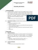 Programa Analitico v2