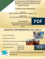 EXPOSICIÓN DE SUELOS 1