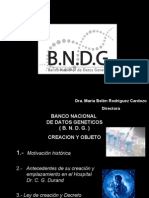 BNDG (Rodriguez Cardozo)