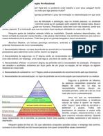 Pirâmide de Maslow e Motivação Profissional