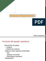 Presentacion Sistema Respiratorio ( 1 )