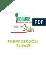 Aguacate, Programa de Produccion