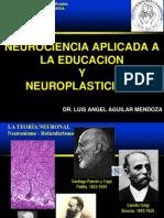 1 Neuroeducacion y Plasticidad Arequipa 2014