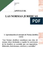 Las Normas Juridicas Capitulo III