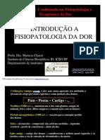 Aula de Introducao a Fisiopatologia Da Dor