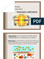 p.p. homeostasis y función renal