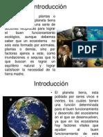 edesarrollosustentableunidadiunidifactoreslimitativos-100120193457-phpapp01