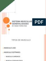 Sistema Muscular, Generalidades