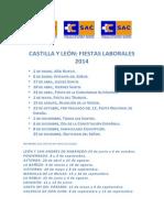 Fiestas Cyl 2014