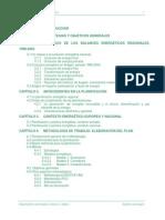 PlanAragonIndice y Creacion Agencia