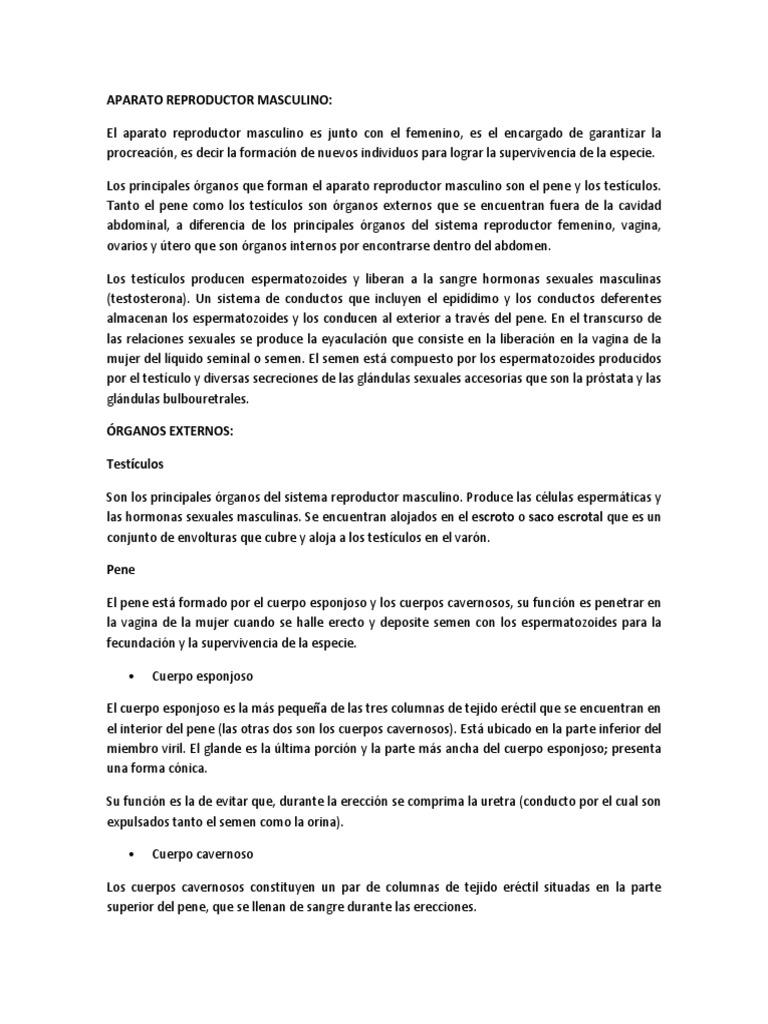 APARATO REPRODUCTOR MASCULINO y FEMENINO, MENSTRUACIÓN, SEXO Y ...