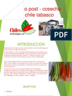 Chile Tabasco