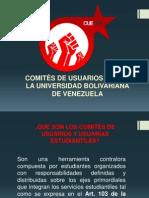 Presentación Comite de usuarios 2012-2013