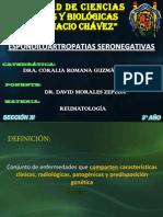 Espondiloartropatia Seronegativa