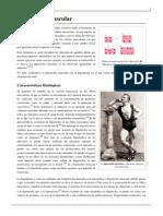 Hipertrofia muscular.pdf