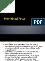 Mumifikasi Fetus