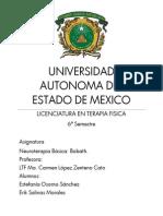 Neuroterapia Básico. Desarrollo Motor