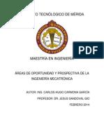 Áreas de oportunidad de ingeniería Mecatrónica-Carmona Garcia