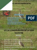 Conservacion de La Vida Silvestre Grupo 3