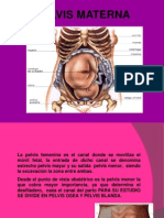 pelvisnormalyfisiologiadepartonormal-1-120525041553-phpapp02