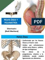 126054964 Pelvis Osea y Pelvimetria Raul Martinez PDF 130618195212 Phpapp01