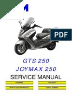 SYM JOYMAX GTS RV 250 Service Manual