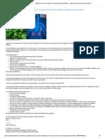 Un bouquet de persil pour nettoyer les reins et renforcer notre système immunitaire.pdf