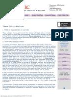 Beginning Molecular Biology Laboratory Manual