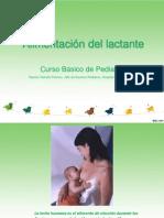 alimentacion en primer año de vida curso de pediatria