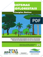 Cartilha-SAFs-para-cortar.pdf