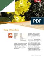 BTT Fact 01 Steeg Weissenbach_klein