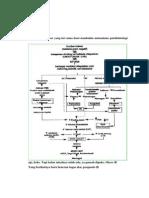 Tugas Patofisiologi