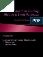 Anatomi Fisiologi-hidung