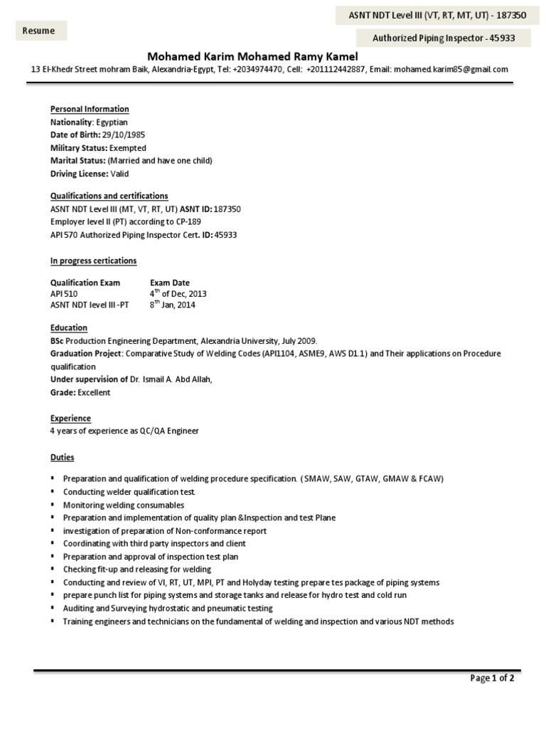 Resume   Egypt   Engineering