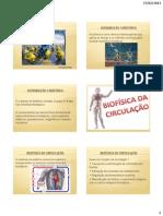 Biofisica Sistema Circulatorio