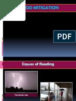 Flood Mitigation