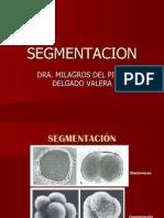Disco Germinativo Bilaminar y Trilaminar