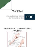 Anatomia II Musculos de Extremidades Sup.inf.