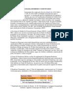 PROGRAMA BOMBEIRO COMUNITÁRIO