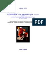 Adelino Torres-SEMINÁRIO DE METODOLOGIA-documento preliminar