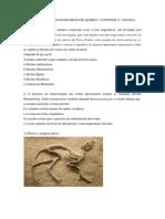 EXERCÍCIOS ROCHAS E MINERAIS