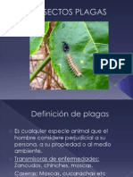 Clase 4 Definición de plagas